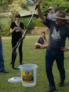 Snake Awareness